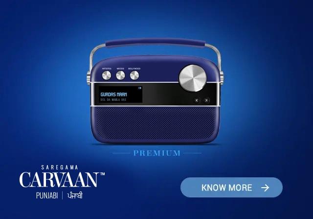 Saregama Carvaan Hindi Premium